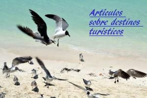 Artículos sobre viajes y destinos turísticos.